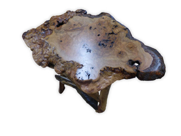Burl Top Side Table with Root Base - top view