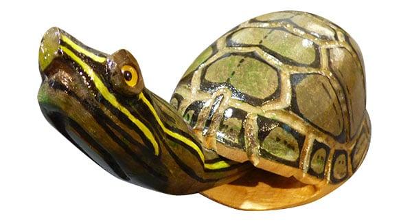 Turkey Caller - Musk Turtle